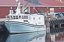 Fiskebåt LL9 Svartskär Lysekil